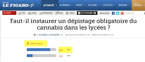 figaro sondage cannabis